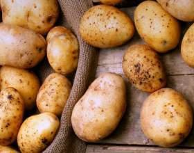 """6 Бабусиних секретів використання картоплі С""""РѕС'Рѕ"""