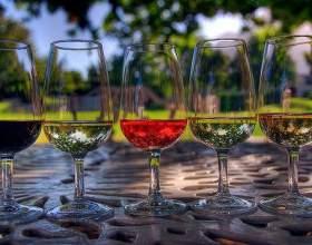 Чим відрізняються вина? фото