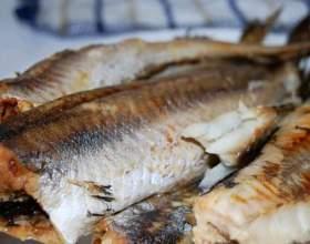 Чим корисна риба? фото