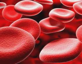 Чим підвищити еритроцити? фото