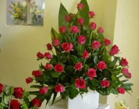 Що робити, щоб троянди довше стояли? фото