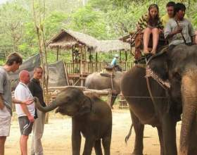 Що подивитися в таїланді? фото