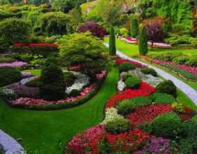 Що таке сади? фото