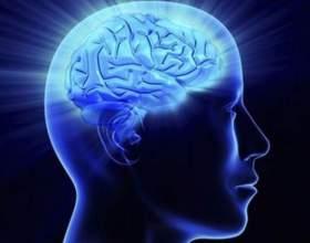 Що таке розум? фото
