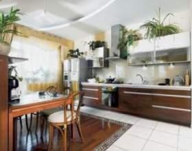 Дизайн рослинами для дому та офісу фото