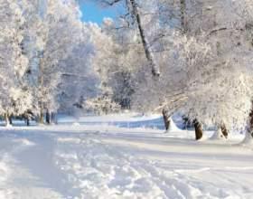 До чого сниться зима? фото