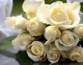 До чого сняться білі троянди? фото