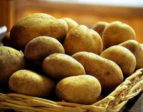 Як зберігати картоплю? фото