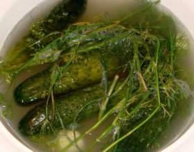 Як малосолов огірки? фото