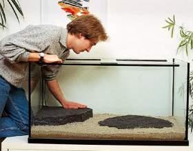Як міняти воду в акваріумі? фото