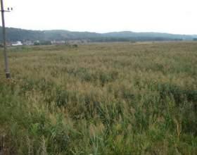 Як знайти земельну ділянку? фото