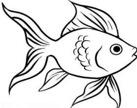Як намалювати рибу? фото