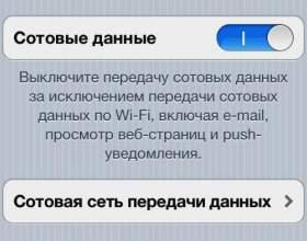 Як відключити інтернет на iphone? фото