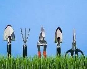 Як підготувати до літнього сезону інструменти для дачі фото