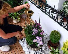 Як поливати квіти? фото