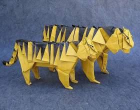Як зробити тигра? фото