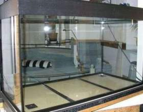 Як зібрати акваріум? фото