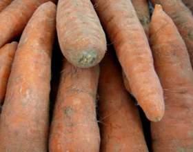 Як зберегти моркву взимку? фото