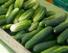 Як зберегти огірки? фото