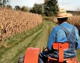 Як стати фермером в росії? фото
