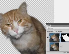 Як видалити фон в фотошопі (photoshop)? фото