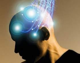 Як поліпшити роботу мозку? фото