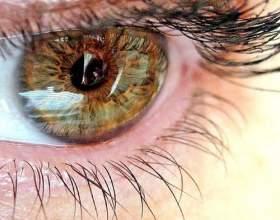 Як поліпшити зір? фото