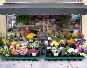 Як вибрати квіти? фото