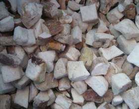 Як заморозити білі гриби? фото