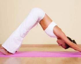Як займатися гімнастикою? фото