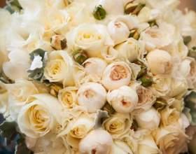 Які квіти дарують на весілля? фото
