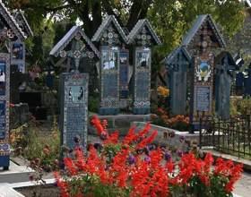 Які квіти на цвинтарі? фото