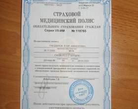 Які документи потрібні для поліса? фото