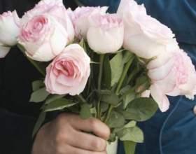 Якого кольору дарувати квіти? фото