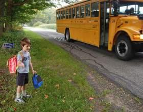 Коли йти в школу? фото