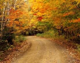 Куди поїхати в листопаді? фото