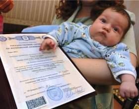 Материнський капітал: які документи потрібні? фото