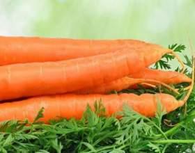 Скільки калорій в моркви? фото
