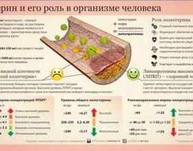 Зниження холестерину народними засобами фото