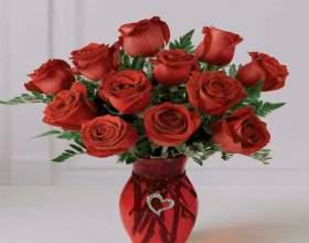 В яку воду ставити троянди? фото